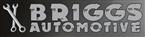 Briggs Automotive