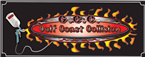 Gulf Coast Collision Inc